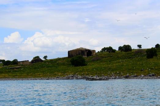 Adır Adası büyülüyor