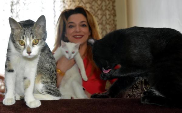 Kedilerine yabancı liderlerin adını verdi