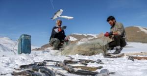 Donan gölde tehlikeli balık avı