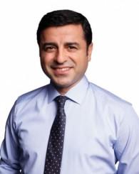 HDP'nin meclise giren 80 milletvekili