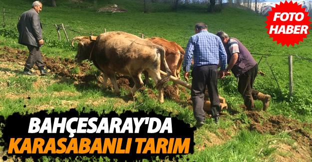 Bahçesaray'da karasabanlı tarım hala devam ediyor - Van Haber