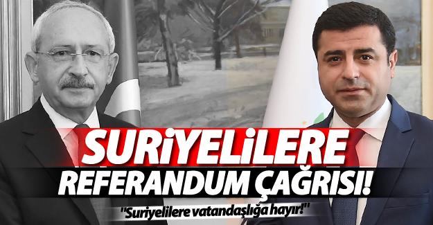 CHP ve HDP'den 'Suriyelilere vatandaşlık için' referandum çağrısı