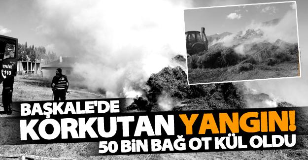 Başkale'de korkutan yangın! 50 bin bağ ot kül oldu