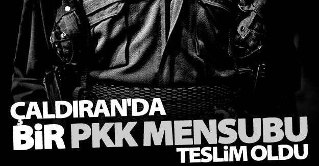 Çaldıran'da bir PKK mensubu teslim oldu