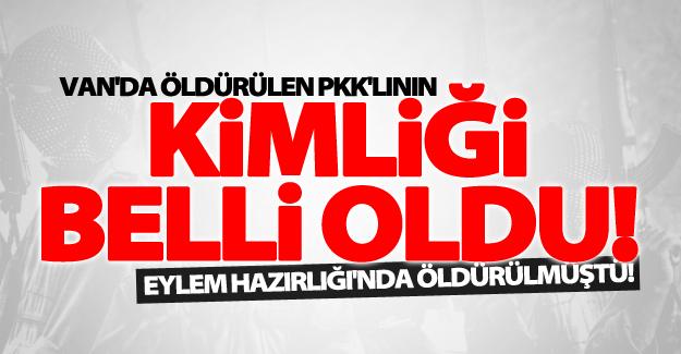 İpekyolu'da öldürülen 2 PKK'lıdan birinin kimliği belli oldu!