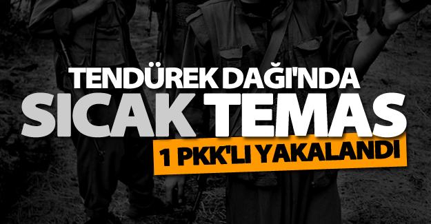 SON DAKİKA! Tendürek Dağı'nda bir PKK mensubu yakalandı