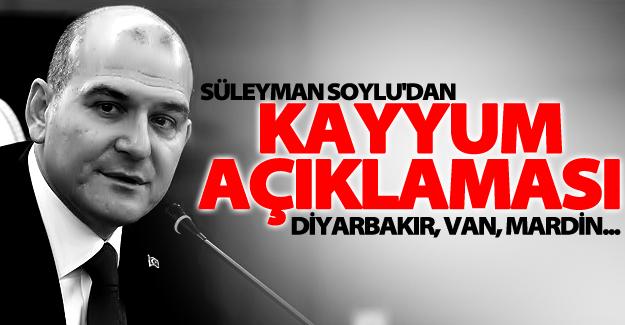 Bakan Soylu'dan çok önemli kayyum açıklaması! Diyarbakır, Van, Mardin...