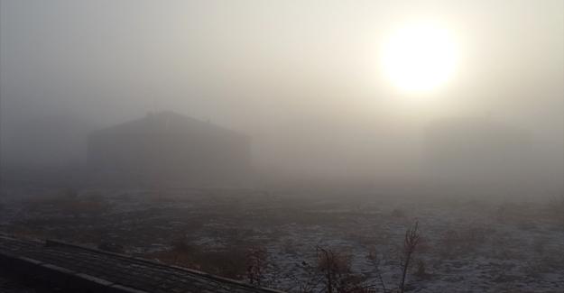 Çaldıran'da yoğun sis hayatı olumsuz etkiledi