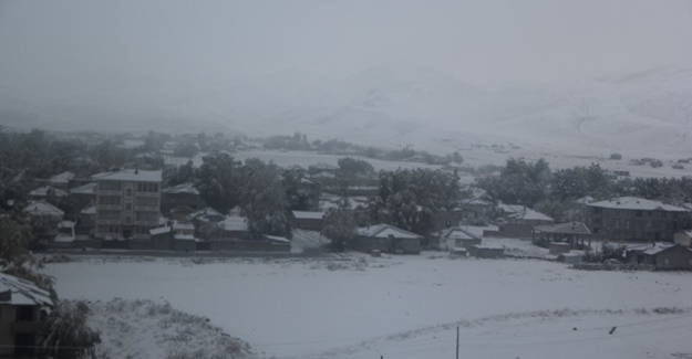 Çaldıran'da kar yağışı