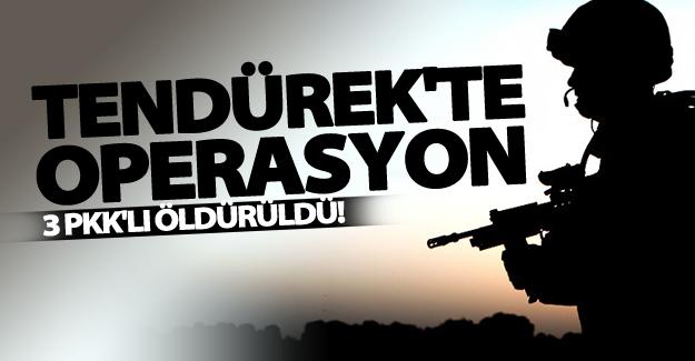 Tendürek Dağı'nda PKK'ya yönelik operasyon!