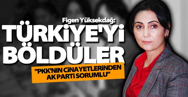 """Yüksekdağ: """"PKK'nın cinayetlerinden AK Parti sorumlu"""""""