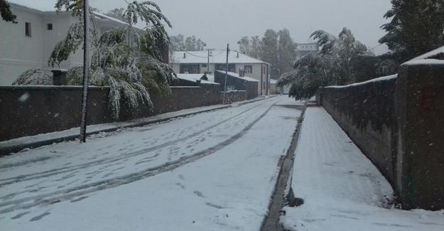 Çaldıran'da kar yağışı hayatı olumsuz etkiledi