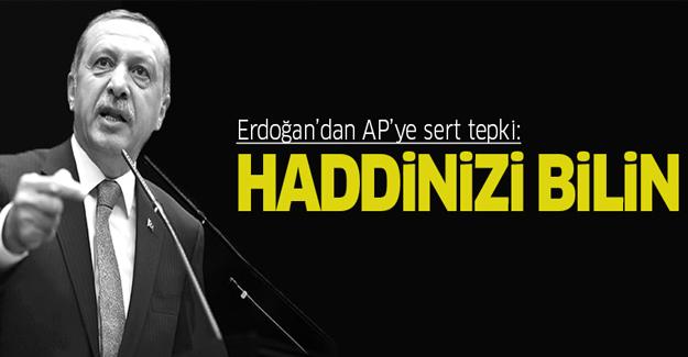 Cumhurbaşkanı Erdoğan'dan AP'ye: Haddinizi bilin!