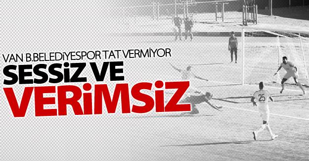 Van Büyükşehir Belediyespor sessiz ve verimsiz!