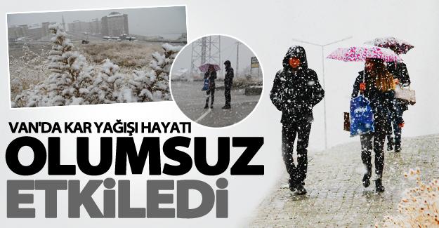 Van'da lapa lapa kar yağışı hayatı olumsuz etkiledi