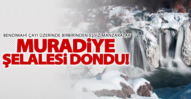Muradiye Şelalesi dondu