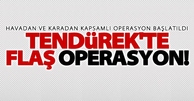 SON DAKİKA! Tendürek'te havadan ve karadan flaş operasyon!