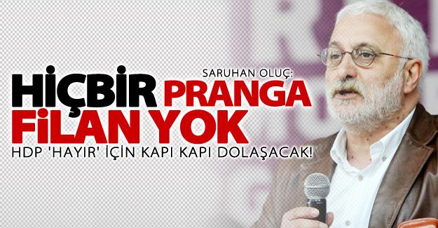 HDP 'Hayır' için kapı kapı dolaşacak