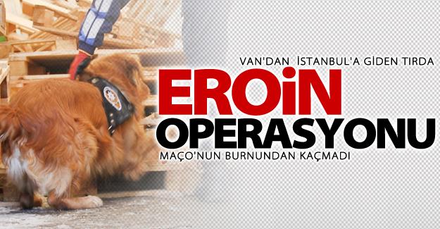 Van'dan İstanbul'a uzanan operasyon!