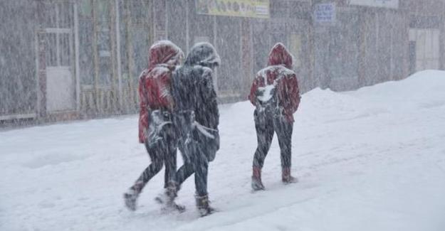 Van Merkez ve ilçeleri'nde kar etkili oluyor