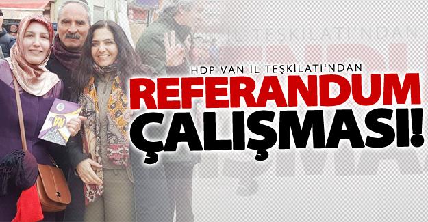 HDP Van il teşkilatının 'Referandum' çalışmaları devam ediyor