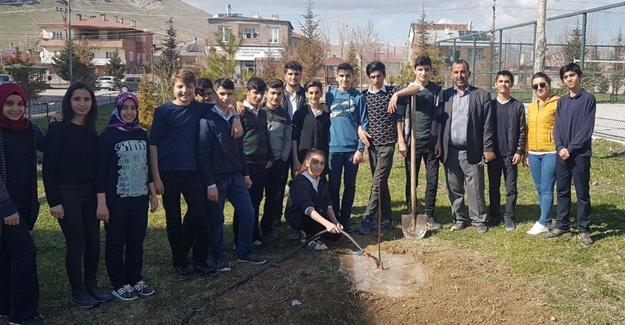 İpekyolu Belediyesi 'den Yeşil Kuşak Projesi