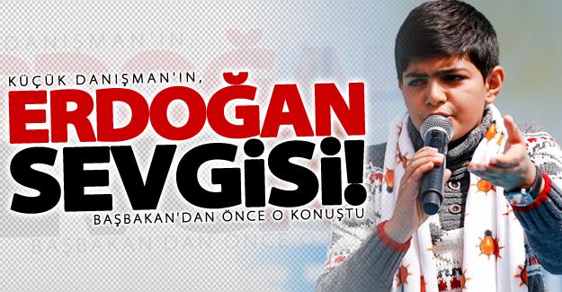Küçük Danışman'ın, Erdoğan sevgisi