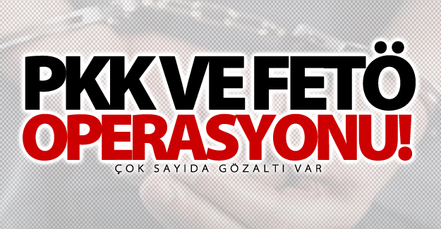 Van'da eş zamanlı PKK ve FETÖ operasyonu! Çok sayıda gözaltı var
