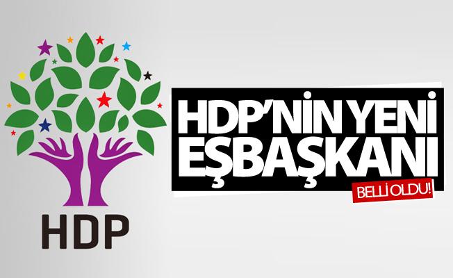 İşte HDP'nin yeni eşbaşkanı
