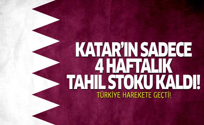 Katar'ın sadece 4 haftalık tahıl stoku kaldı! Türkiye harekete geçti
