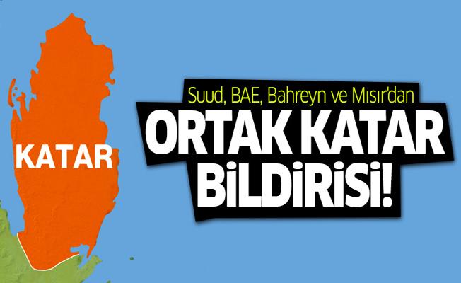Suud, BAE, Bahreyn ve Mısır'dan ortak 'Katar' bildirisi