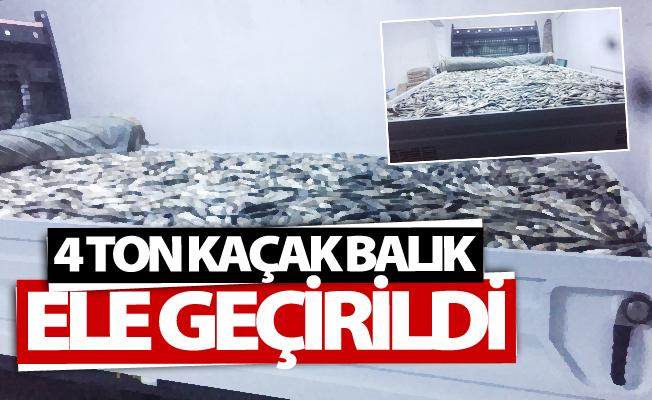Van'da 4 ton kaçak avlanmış balık ele geçirildi
