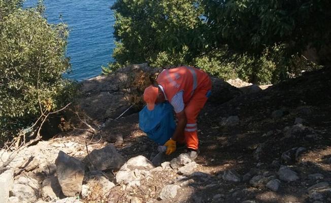 Akdamar Adası'nda çevre temizliği
