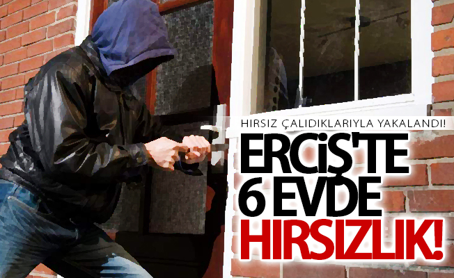 Erciş'te hırsızlık! 1 kişi gözaltına alındı