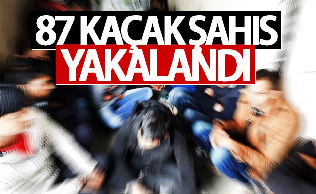 Van'da 87 kaçak şahıs yakalandı
