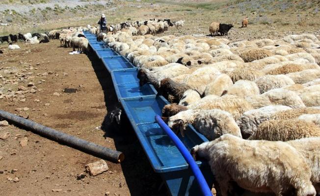 Büyükşehir Belediyesinden çiftçiye sıvat desteği
