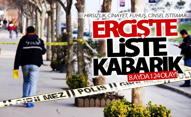 Erciş'te liste kabarık! Polis 8 ayda 124 olayı aydınlattı