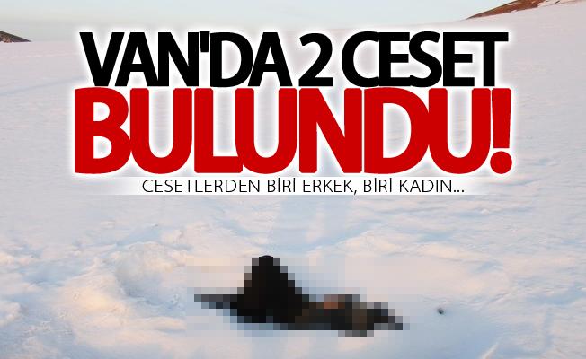 Van'da biri erkek biri kadın 2 donmuş ceset bulundu
