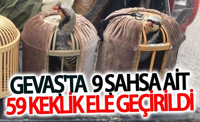Gevaş'ta  9 şahsa ait 59 keklik ele geçirildi