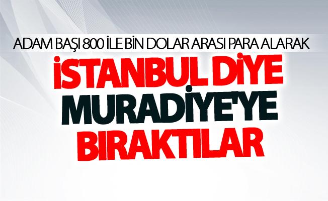 Kaçak göçmenleri İstanbul diye Muradiye'ye bıraktılar