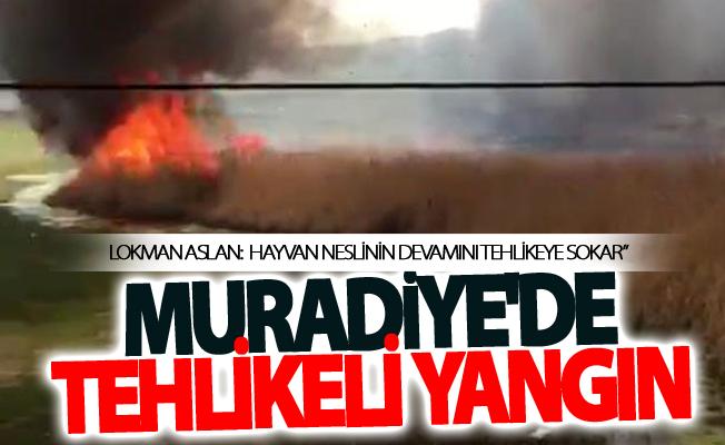 Muradiye'de tehlikeli yangın