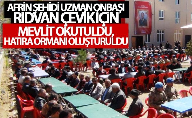 Şehit Rıdvan Çevik için mevlit okutuldu, hatıra ormanı oluşturuldu