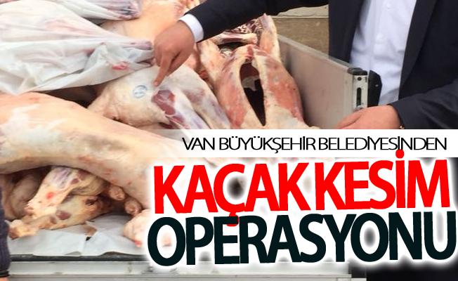 Van Büyükşehir Belediyesinden kaçak kesim operasyonu