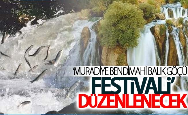 'Muradiye Bendimahi Balık Göçü Festivali' düzenlenecek