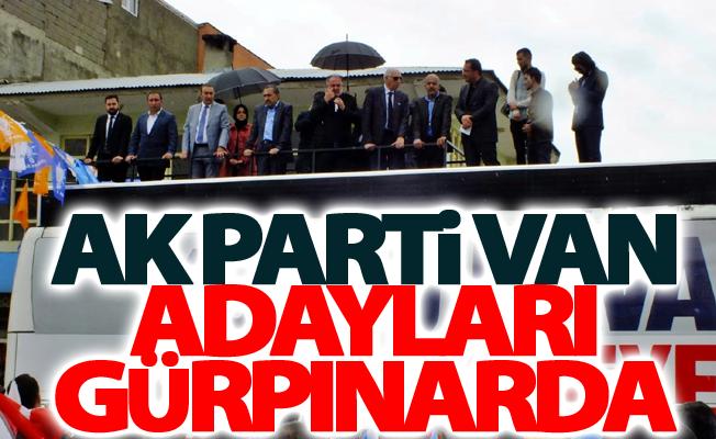 Ak Parti Van Adayları Gürpınarda