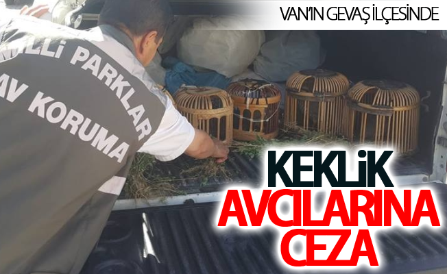 Van'ın Gevaş ilçesinde keklik avcılarına ceza