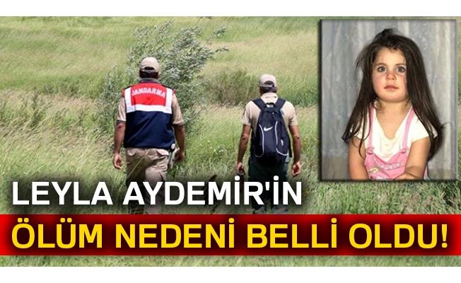 Ağrı Valisi'nden Leyla Aydemir'in ölümüyle ilgili açıklama