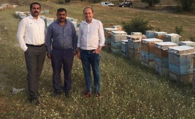 """Tandoğan; """"Van organik bal üretim merkezi olacak"""""""