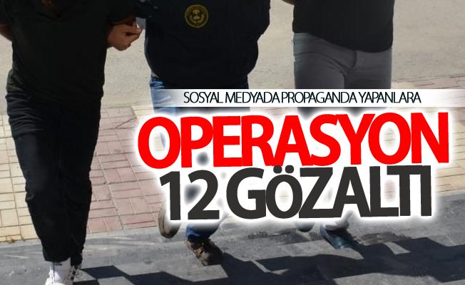 Van'da operasyon:12 gözaltı