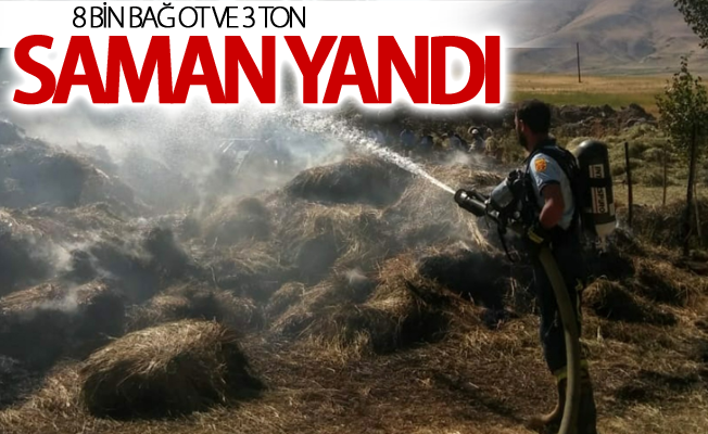 Özalp'ta 8 bin bağ ot ve 3 ton saman yandı